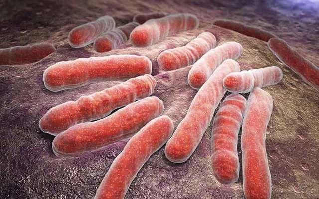 Туберкулез и беременность: причины, симптомы, методы диагностики и лечение, опасность для плода, профилактика