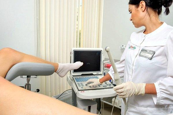 Рак шейки матки на УЗИ: как выглядит опухоль, подготовка, методика проведения, результаты